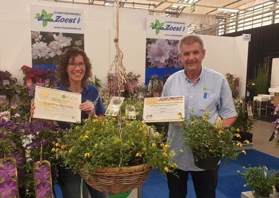 Medals earned by Clematis Little Lemons