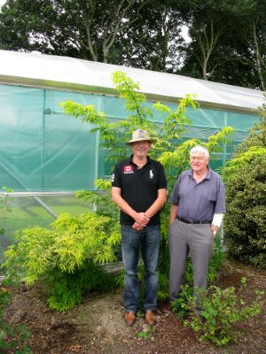 Sambucus Sunrise Surprise with breeder Alan G. Walmsley