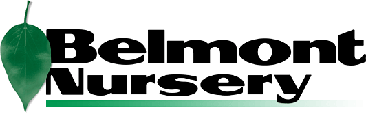 Logo of Belmont Nursery Inc.