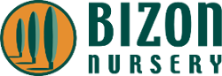 Logo of Bizon Nursery