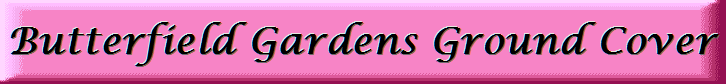 Logo of Butterfield Gardens II Inc.