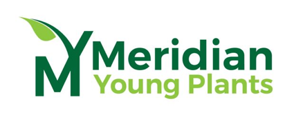 Logo of Meridian Young Plants