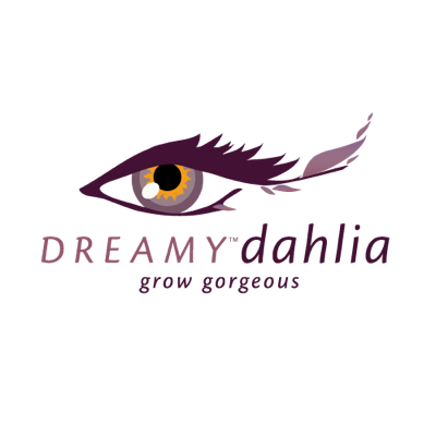 Image of Dahlia Dreamy® Eyes