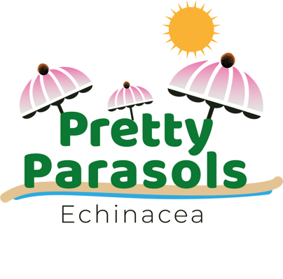 Image of Echinacea Pretty Parasols