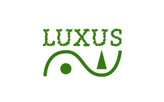 Image of Ilex LUXUS Globe