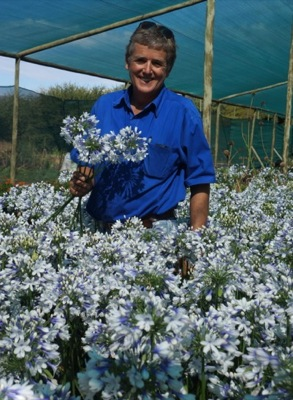 Agapanthus Twister with breeder De Wet Plant Breeders