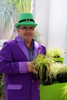 Carex EverColor® Everillo with breeder Fitzgerald Nurseries ltd.