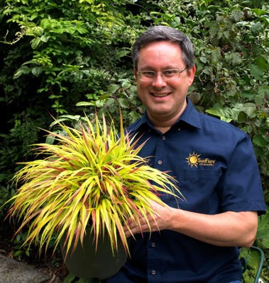 Hakonechloa Sunflare with breeder