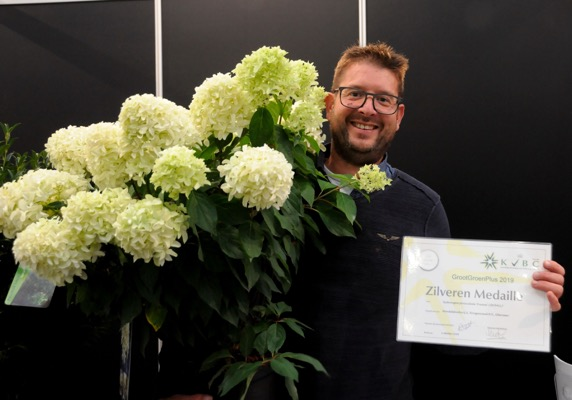 Medals earned by Hydrangea paniculata Skyfall