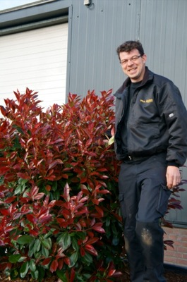 Photinia Red Light with breeder Van Oploo Tuinplanten BV
