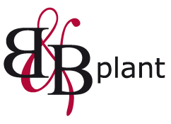 Logo of B&B Plant B.V.