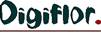 Logo of Digiflor