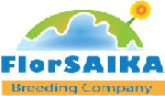Logo of Florsaika