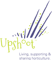 Logo of UpShoot LLC