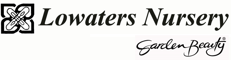 Logo of Lowaters Ltd