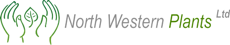 Logo of North Western Plants Ltd.