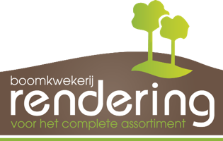 Logo of Boomkwekerij Rendering