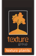 Logo of Texture Plants