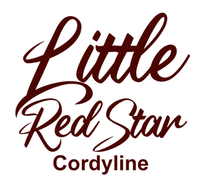 Image of Cordyline Little Red Star