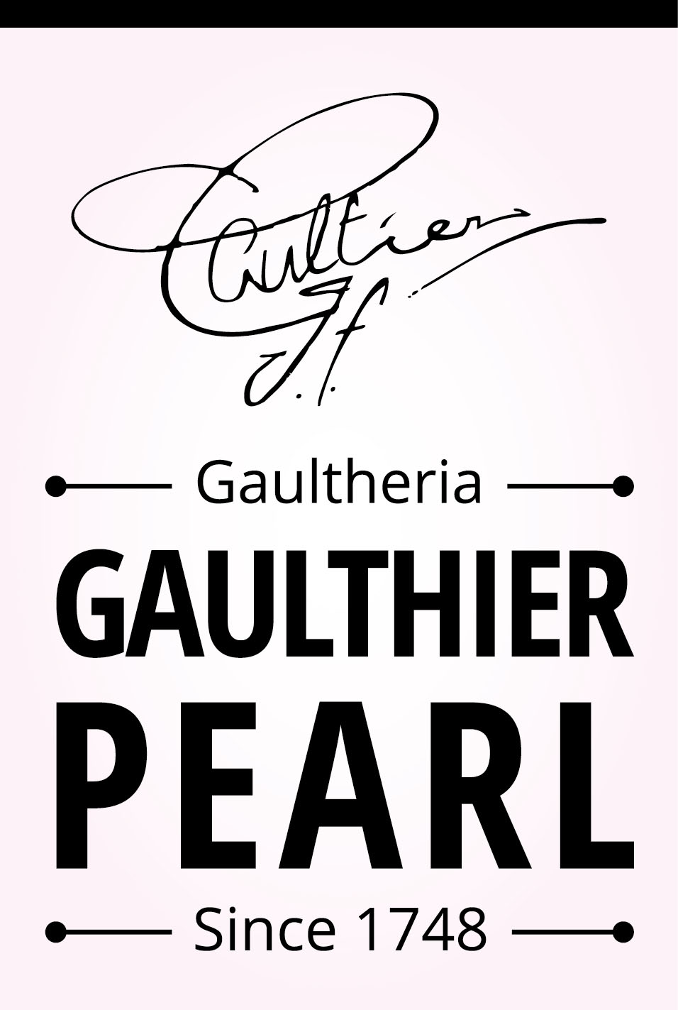 Image of Gaultheria Gaulthier Pearl®