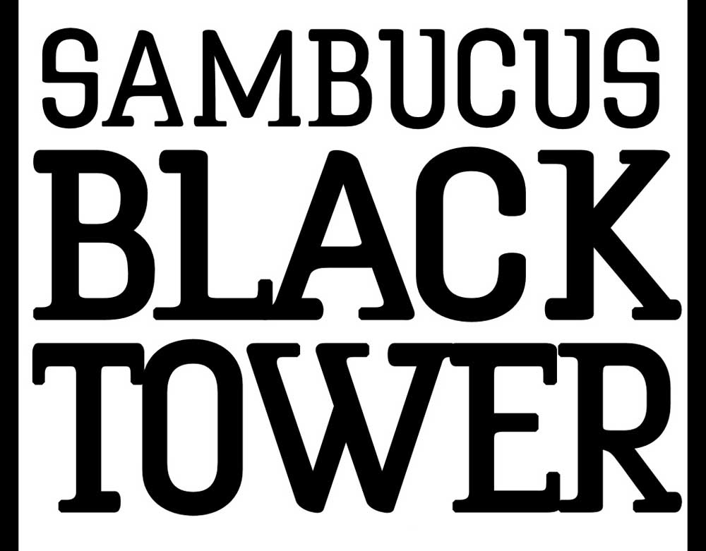 Image of Sambucus Black Tower